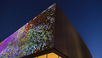 A Murmuration at Contemporary Art Museum St. Louis by Zlatko Cosic